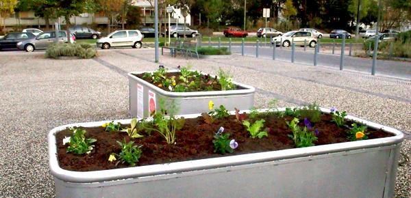 Inauguration des jardinières – Quartier duCerisier